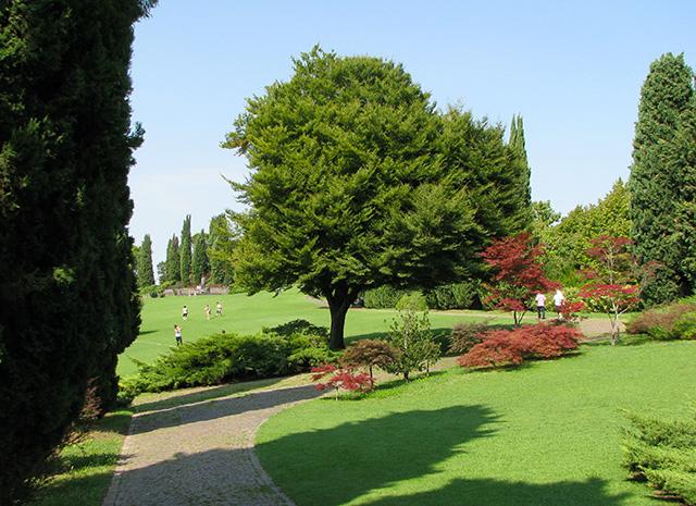 Creazione e manutenzione aree verdi, parchi pubblici e privati