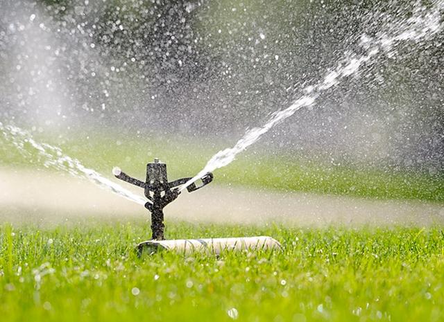 Realizzazione impianti di irrigazione zinato vivai for Impianto irrigazione automatico
