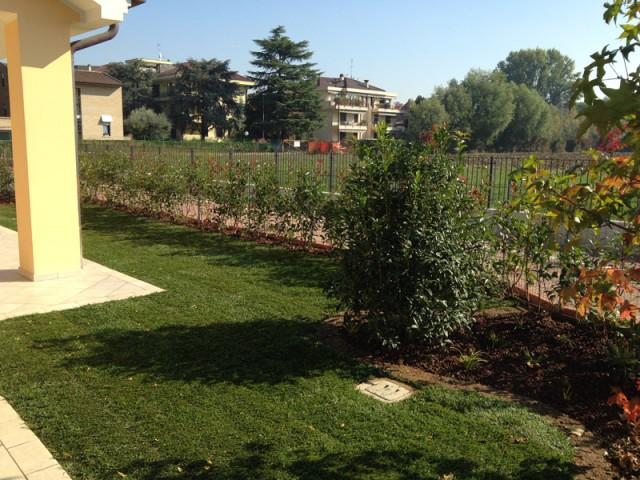 Progettazione e realizzazione giardino a padova zinato vivai for Progettazione giardini roma