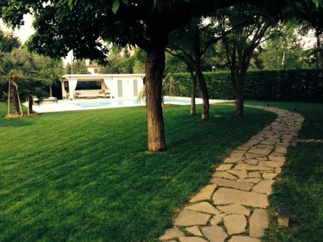 Realizzazione giardino con piscina a padova zinato vivai - Giardino con piscina esterna ...