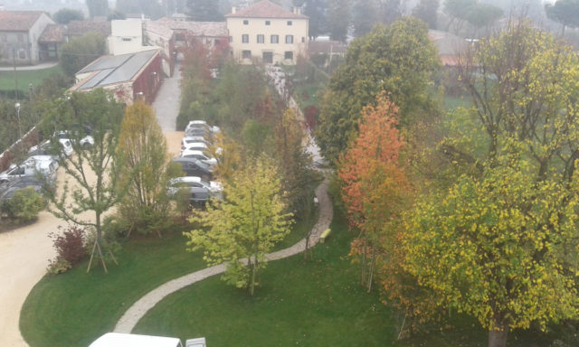 restauro giardino parco villa riviera del brenta (3)