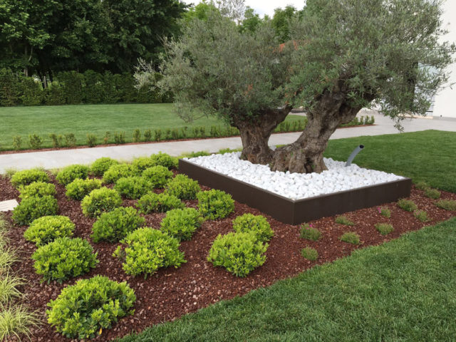 restauro giardino parco villa riviera del brenta (5)