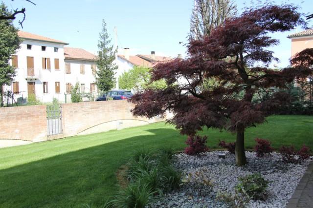Giardino a Pianiga (11)