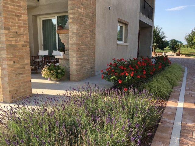 giardino a camponogara in stile mediterraneo semplice (1)