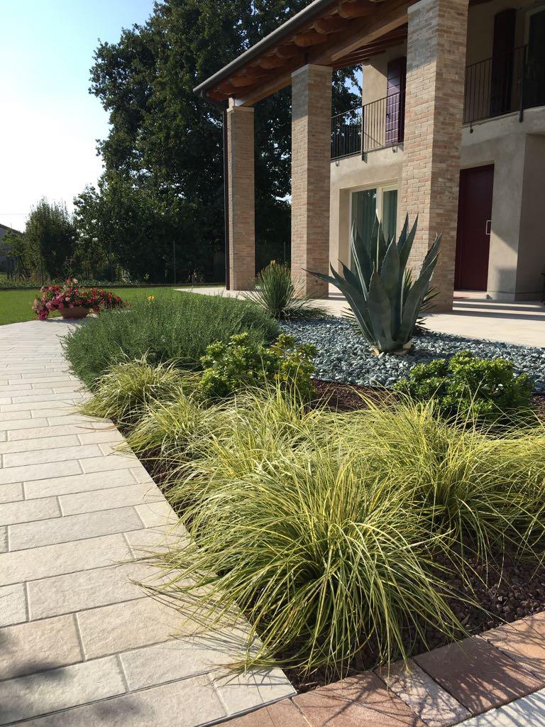 Piante Per Giardini Moderni giardino moderno creato per manutenzione minima a calcroci