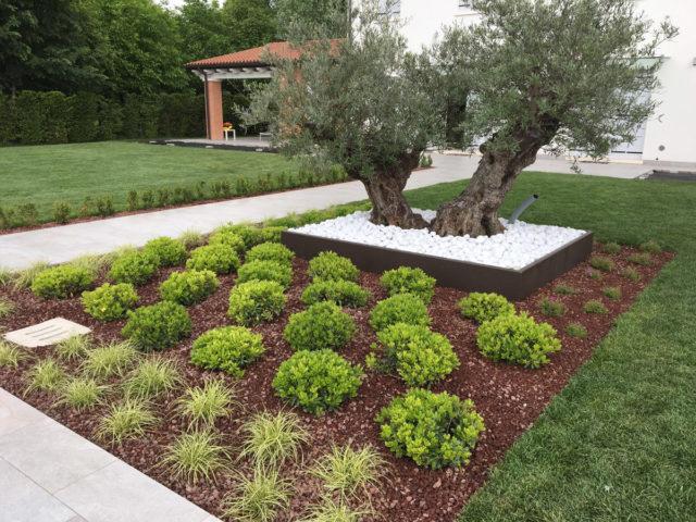 restauro giardino parco villa riviera del brenta (1)